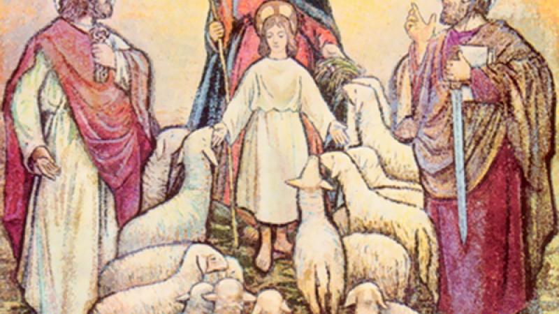 Lễ Đức Maria Mẹ Chúa Chiên Lành, Đấng Bảo Trợ của Dòng Tôi Tớ Đấng Bầu Cử